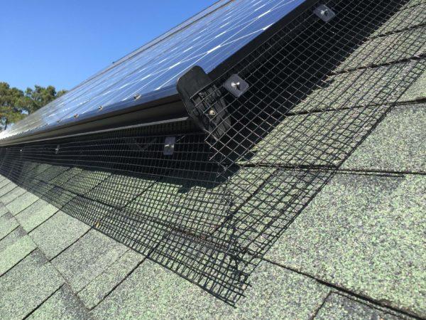 Solar Panel & Squirrel Guard Installation