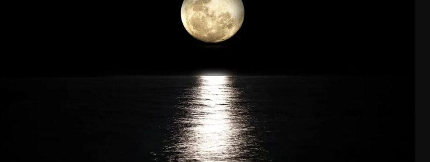 Moon Panels
